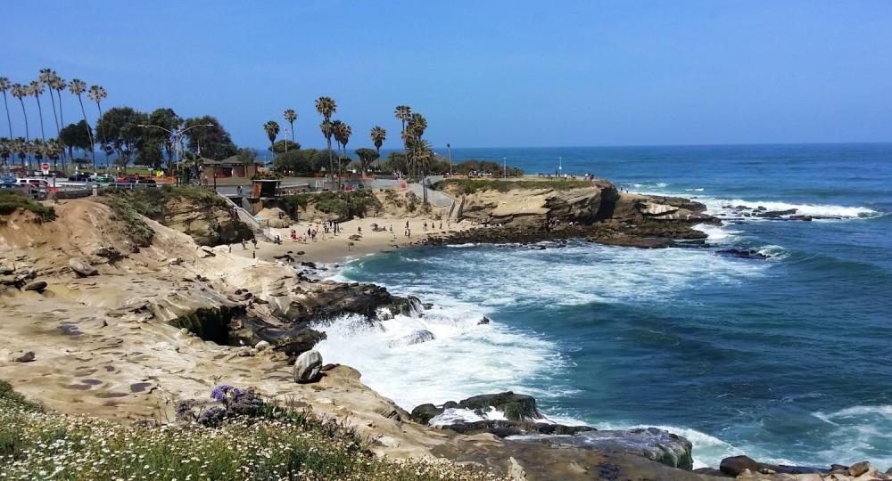 Visit La Jolla Cove