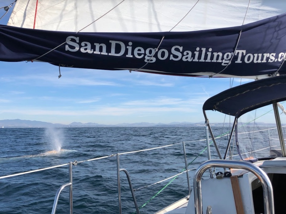 Guest Spotlight: John The Wanderer; Afternoon San Diego Sail with San Diego Sailing Tours